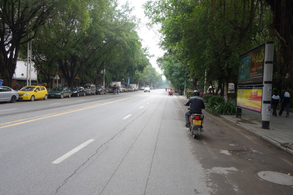 A tree lined street in Wuzhou.