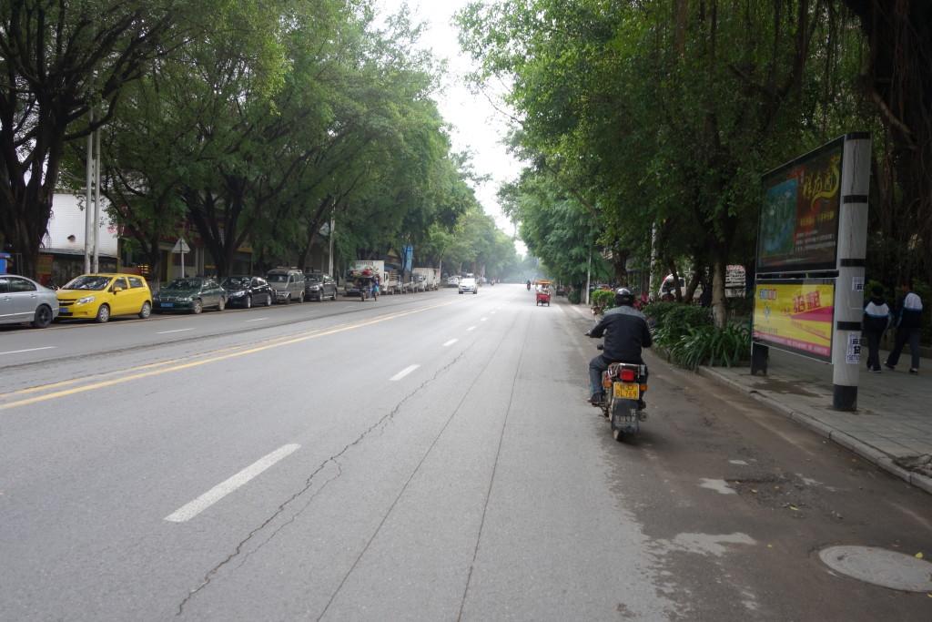 A tree lined street in Wuzhou.